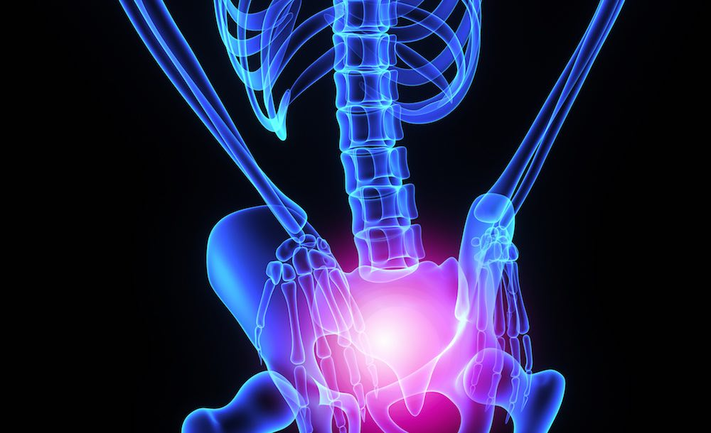 Hip joint, Walkley Chiropractic Group, Bunbury, Western Australia
